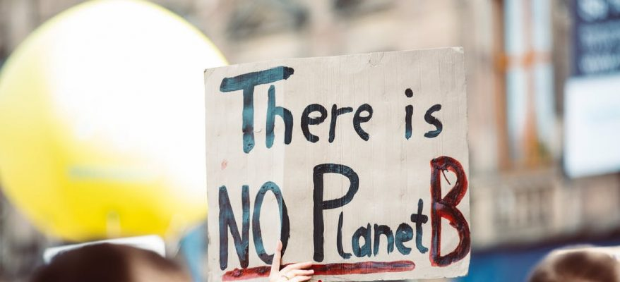placard at a climate march, representing the need for climate action