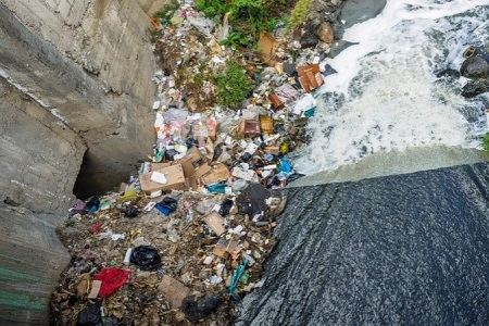 Garbage accumulated near a river